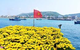 Với vỏn vẹn 10km2 và 2 vạn dân, vì sao Lý Sơn lại hấp dẫn nhà đầu tư đến thế?