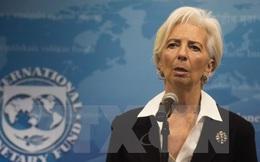 IMF: Chính sách lãi suất âm có lợi cho nền kinh tế toàn cầu