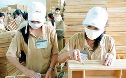 Xuất khẩu gỗ sang EU: Cần kiểm soát chặt chất lượng gỗ