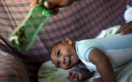 Virus Zika ẩn nấp sâu trong cơ thể, khó bị diệt