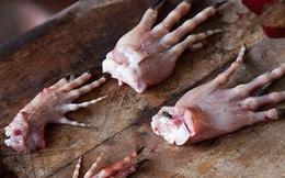Đằng sau những đôi giày da thời thượng là cả một quá trình lột da cá sấu sống rùng rợn
