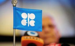 [Kinh tế học qua video] OPEC là gì?