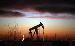 Chảy đi khắp mọi nơi, dầu thô Mỹ đang định hình lại bức tranh năng lượng thế giới