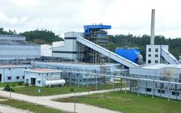 Nhà máy gần 1.900 tỷ đồng ở Dung Quất đóng cửa