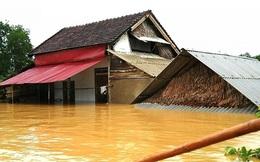 Ý tưởng giúp bà con miền Trung làm nhà chống lũ: Nước lên, nhà cũng... lên