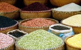 Xuất khẩu nông sản tháng 1 đạt 2,33 tỷ USD