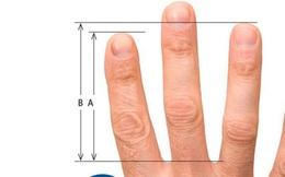 """Chiều dài ngón tay """"tiết lộ"""" những sự thật khiến bạn giật mình"""