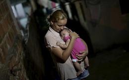 WHO cảnh báo virus Zika có thể bùng nổ thành đại dịch