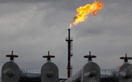 Không lâu nữa, thế giới sẽ có thể dùng dầu thô để đổ đầy các bể bơi