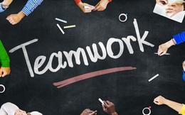 Bắt nhân viên làm việc nhóm liệu có hiệu quả như mong đợi?