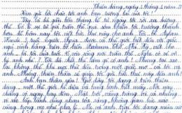 Bức thư đầy nhân văn của học sinh lớp 9 Việt Nam khiến cả thế giới thức tỉnh