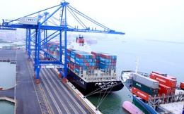 2 loại hàng hóa sau được cấp phép nhập khẩu vào hoàn toàn qua Internet chỉ trong 5 ngày