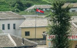 Hệ sinh thái khởi nghiệp Việt Nam là hình mẫu đang được Triều Tiên áp dụng và làm theo