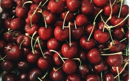 Loạn giá cherry - liệu cứ phải hàng đắt tiền mới là chuẩn Mỹ, Canada?