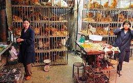 Đây là lý do vì sao thịt gà Trung Quốc lại siêu rẻ
