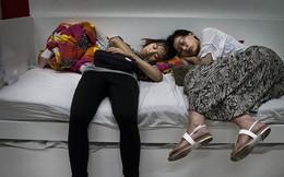 IKEA cảnh báo giường mình quá... ấm, đề nghị khách hàng ngừng lén lút ngủ chui