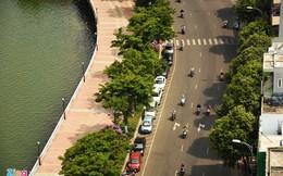 Đà Nẵng mua bảo hiểm cho hàng nghìn cây xanh