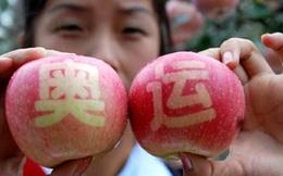 120.000 tấn hoa quả Trung Quốc đã vào Việt Nam từ đầu năm đến nay