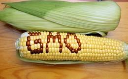 107 học giả đạt giải Nobel viết thư kêu gọi thế giới dừng phản đối cây trồng biến đổi gen