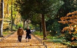 7 bí kíp ai cũng làm được nhưng giúp bạn sống lâu trăm tuổi