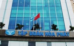 Hòa Phát thành lập công ty nông nghiệp với vốn điều lệ 2.500 tỷ đồng