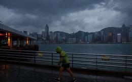Sàn chứng khoán Hồng Kông đóng cửa vì siêu bão