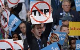 Dù TPP có không thành hiện thực thì Việt Nam vẫn tiếp tục cải thiện môi trường kinh doanh