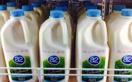 """Sáng kiến này đã giúp một công ty sữa vô danh tạo """"cơn địa chấn"""" trên thị trường bơ sữa thế giới"""