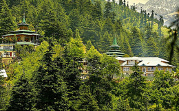 Chính phủ Ấn Độ vừa làm nức lòng người dân, chi 6 tỉ USD cho chiến dịch trồng rừng lớn nhất lịch sử