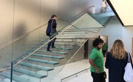 Apple chi 1 triệu USD chỉ để xây cầu thang trong cửa hàng Apple Store ở Snn Francisco