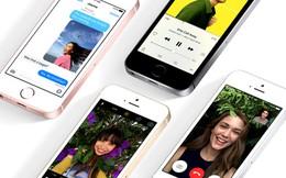 Ký hiệu SE trên iPhone phiên bản mới có nghĩa gì?