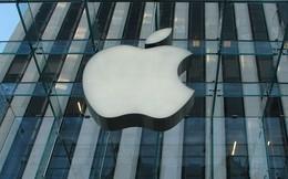 Nhiều người Việt ứng tuyển chức danh giám đốc Apple