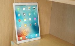 Apple sắp tung ra iPad vừa Pro vừa... mini?