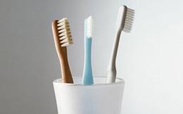 Đặt những món này trong nhà vệ sinh, đừng hỏi sao bạn cứ bệnh mãi