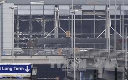 IS thừa nhận khủng bố đẫm máu Brussels