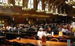 """Harvard 4h30 sáng: """"Đặc sản"""" của những người thiếu tư duy phản biện và thích giáo dục vâng lời?"""