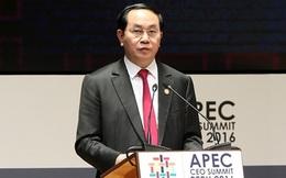 """""""Đăng cai năm APEC 2017 là trọng tâm đối ngoại của Việt Nam"""""""