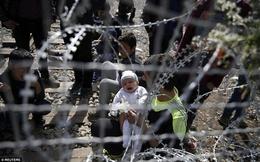 Những em bé di cư bên hàng rào thép gai khiến người xem rơi lệ
