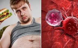 Tìm ra bằng chứng cho thấy ăn nhiều mỡ có thể thúc đẩy ung thư
