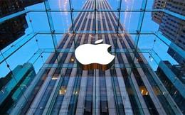 Cổ phiếu Apple có năm mất giá đầu tiên từ 2008
