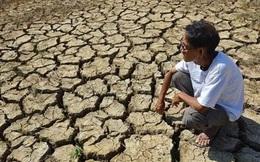 Đồng bằng sông Cửu Long sẽ bắt đầu giảm mặn từ 7/4