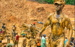 Ngân sách nhà nước có thể mất trắng hàng trăm tỷ đồng vì doanh nghiệp đào vàng lên bán lại để thua lỗ, trốn thuế