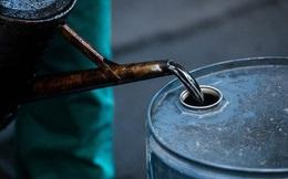 """Múc dầu mang bán 5 tháng đầu năm chưa đạt 30% kế hoạch, Chính phủ cần có """"Kế hoạch B"""" để bù đắp?"""