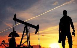 """Muốn kinh tế tăng trưởng """"vừa lòng"""" Quốc hội, phải múc thêm 2 triệu tấn dầu thô nữa mang bán"""