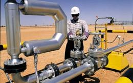 Giá dầu có thể xuống 20 USD một thùng trong năm 2016
