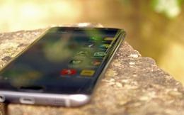 Đừng quên rằng trong năm nay Samsung đã tạo ra một tượng đài mới về thiết kế