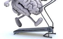 Đừng mong thông minh hơn nếu bạn lười động não, tập luyện
