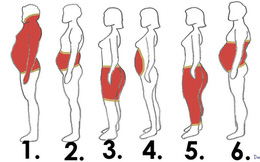 """Nhìn bức ảnh này để xem mình béo ở vùng nào, từ đó có cách """"trừ khử"""" mỡ hiệu quả!"""