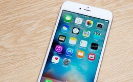 Hàng loạt công ty giành nhau hợp đồng cung ứng màn hình Oled cho iPhone
