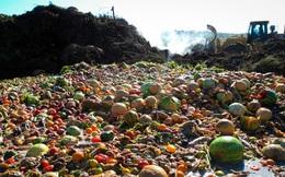 Cách mà nước Pháp đã làm với đồ ăn thừa khiến cả thế giới phải ngả mũ kính nể